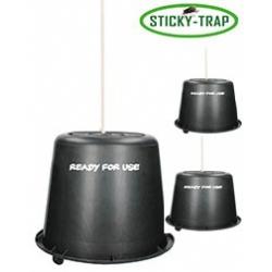 Vedro Sticky Trap 3 ks