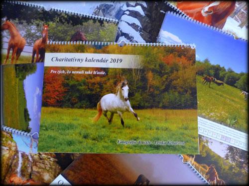 Charitativny kalendar