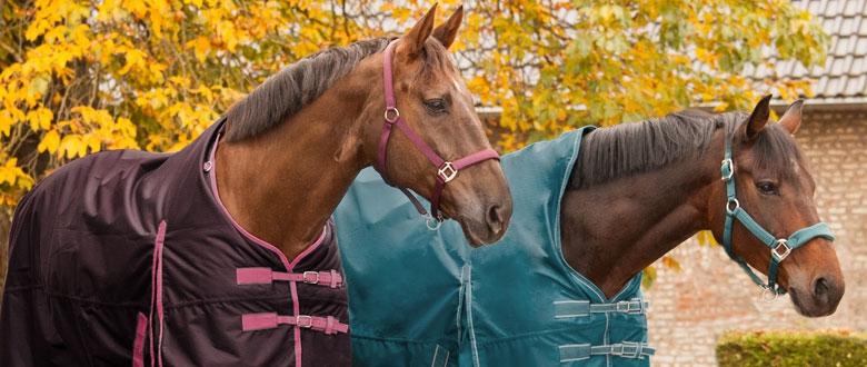 Nepremokavé deky pre kone