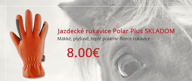 Zimné rukavice Polar Plus